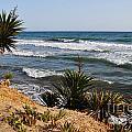 Marbella Beach by Luis Alvarenga