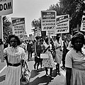 March For Equality by Benjamin Yeager