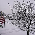 March Snowfall by Barb Montanye Meseroll