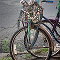Mardi Gras Bicycle by Brenda Bryant