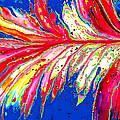 Mardi Gras by Jerry Mifflin