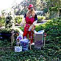 Mardi Gras Scarecrow At Bellingrath Gardens by Marian Bell