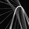 Margaret Hunt Hill Bridge Dallas Texas by Robert ONeil