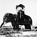 Margate Elephant, C1900 by Granger