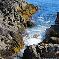 Marginal Way Crevice by Jemmy Archer