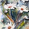 Marguerites by Ismeta Gruenwald
