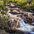 Marie Lakes Stream by Shauna Milton