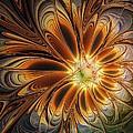 Marigold by Amanda Moore