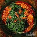Marigold Orb II by Jeff McJunkin