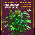 Marijuana Poster by John Haldane