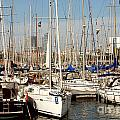 Marina At Port Vell Barcelona by Ivy Ho