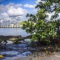 Marina At The Inlet by Debra and Dave Vanderlaan