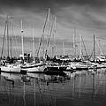 Marina Boats In Victoria British Columbia Black And White by Ben and Raisa Gertsberg