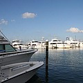 Marina Key West - Harbored Fun by Christiane Schulze Art And Photography
