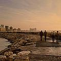 Marina Pier And Pan Of Coast by Daniel Blatt