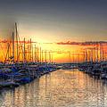 Marina Summer Sunset by Heidi Smith