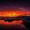 Marina Sunset by Dawn OConnor