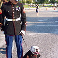 Marine And Bulldog by Kenneth Summers