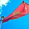 Marine Corps Flag by Tara Potts
