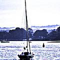 Marine Dream by Joe Geraci