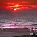 Marine Sunset by Robert Bales