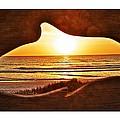 Marineland's Sunrise Dolphin by Alice Gipson
