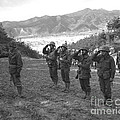 Marines Of The 5th Marine Regiment by Stocktrek Images
