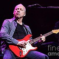 Dire Straits - Mark Knopfler by Concert Photos