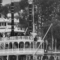 Mark Twain Riverboat Frontierland Disneyland Vertical Bw by Thomas Woolworth