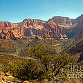 Markaqunt  Mesa In Kolob by Robert Bales