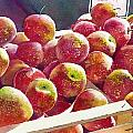 Market Apples by Greg and Linda Halom