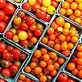 Market Fresh Tomatos by Tina Meador
