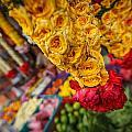 Marketplace by Jennifer Grover