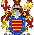 Marlay Coat Of Arms Irish by Heraldry