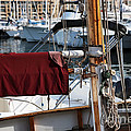 Maroon Sail  by John Rizzuto