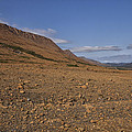 Mars On Earth by Eunice Gibb
