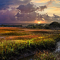 Marsh At Sunrise by Debra and Dave Vanderlaan