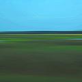 Marsh Blur by Suzanne Gaff