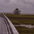 Marsh Boardwalk by JG Thompson
