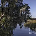 Marsh Creek by Dale Powell