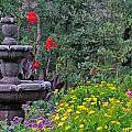 Garden Fountain And Flowers by Ginger Wakem