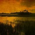 Marsh Island Sunset by Susanne Van Hulst