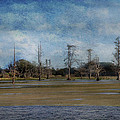 Marsh Lands  by Eagle  Finegan