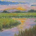 Marsh Light by Sarah Parks
