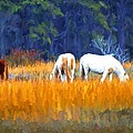 Marsh Ponies by Alice Gipson