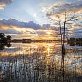 Marsh Sunrise by Debra and Dave Vanderlaan