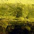 Marsh Under by Linda  Collins lamb