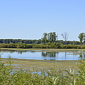 Marshland by Bonfire Photography