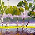 Marshlands Murray River Red River Gums by Pamela  Meredith