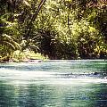 Martha Brae River by Melanie Lankford Photography